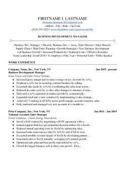 Business Development Resume and Cover Letter Example > Business Development Resume and Cover Letter Example .Docx (Word)