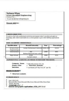 Civil Engineering Resume Example > Civil Engineering Resume Example .Docx (Word)