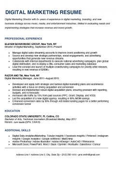 Digital Marketing Resume Sample > Digital Marketing Resume Sample .Docx (Word)