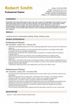Professional Cleaner Resume