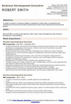 Business Development Executive Resume > Business Development Executive Resume .Docx (Word)
