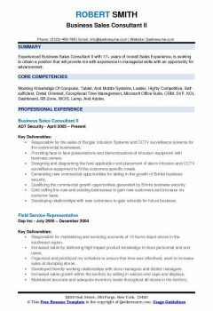 Business Sales Consultant II Resume > Business Sales Consultant II Resume .Docx (Word)