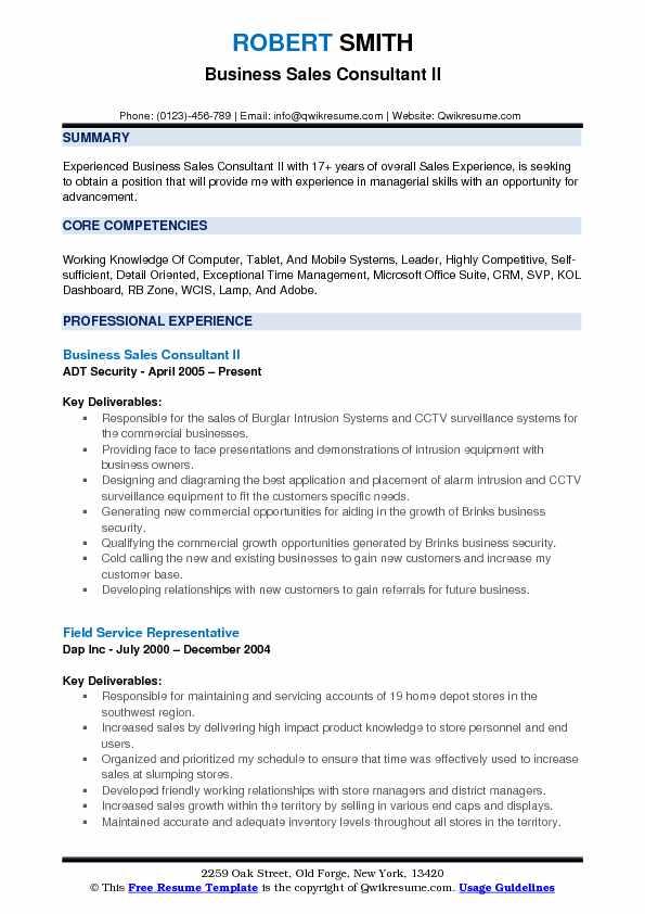 Business Sales Consultant II Resume