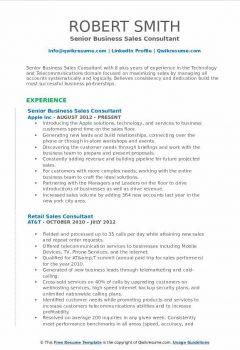 Senior Business Sales Consultant Resume > Senior Business Sales Consultant Resume .Docx (Word)
