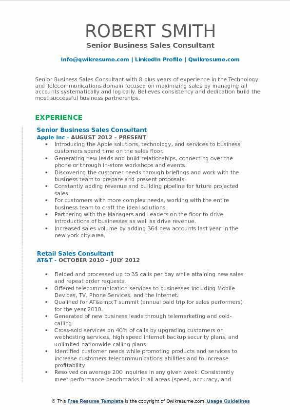 Senior Business Sales Consultant Resume