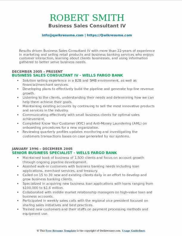 Business Sales Consultant IV Resume