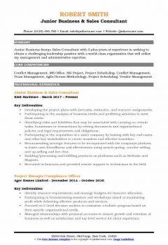 Junior Business & Sales Consultant Resume > Junior Business & Sales Consultant Resume .Docx (Word)