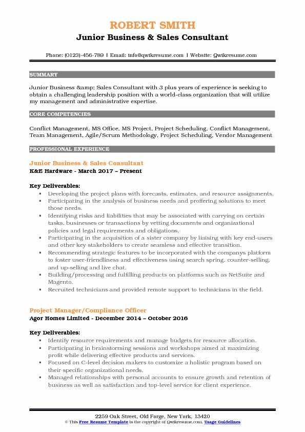 Junior Business & Sales Consultant Resume