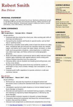 Bus Driver Resume4