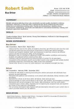 Bus Driver Resume5