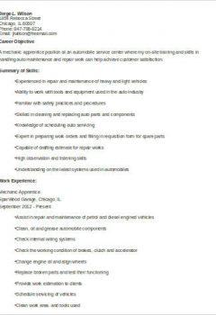 Mechanic Apprentice Resume