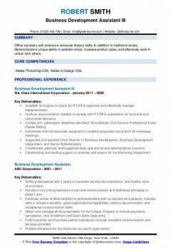 Business Development Assistant III Resume .Docx (Word)