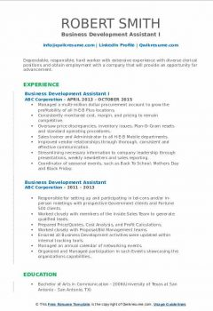 Business Development Assistant I Resume .Docx (Word)
