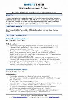 Business Development Engineer Resume1