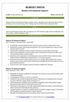 Business Development Engineer Resume2