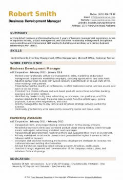 Business Development Manager Resume .Docx (Word)