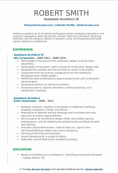 Assistant Architect III Resume > Assistant Architect III Resume .Docx (Word)