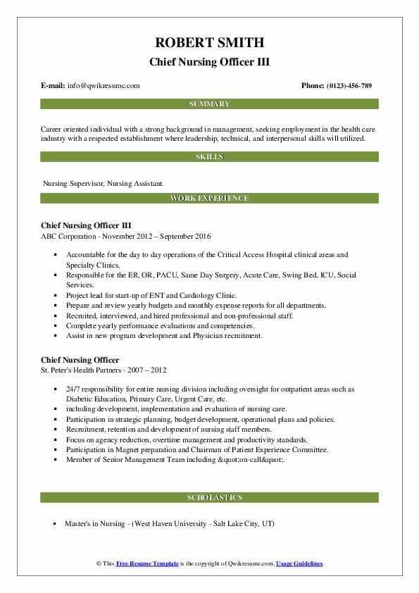 Chief Nursing Officer III Resume .Docx (Word)