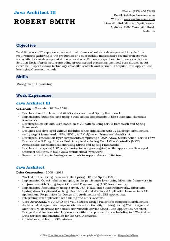 Java Architect Resume2