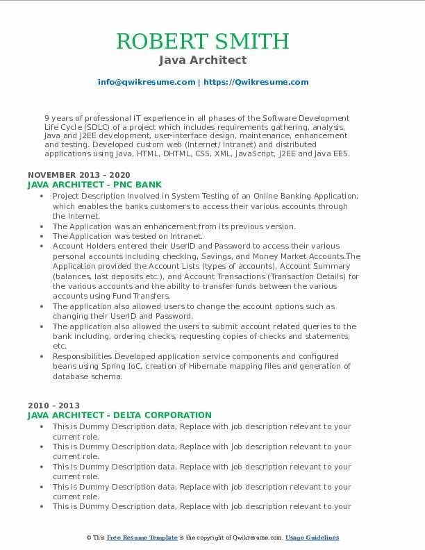 Java Architect Resume9