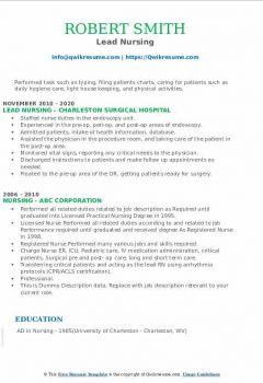 Lead Nursing Resume