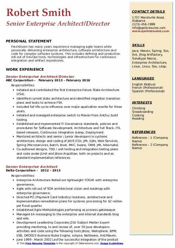 Senior Enterprise Architect/Director Resume