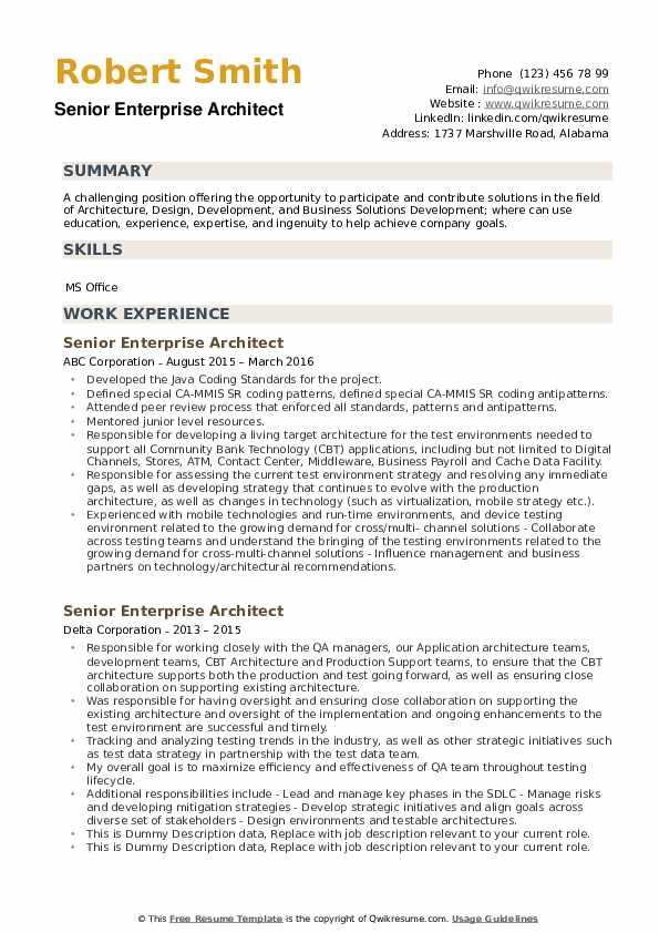 Senior Enterprise Architect Resume1