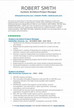 Systems Architect-Project Manager Resume