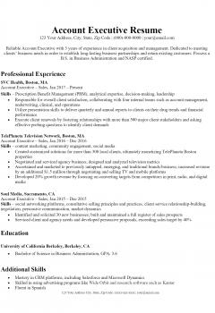 Account Executive Resume .Docx (Word)