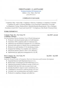 Auditing Resume