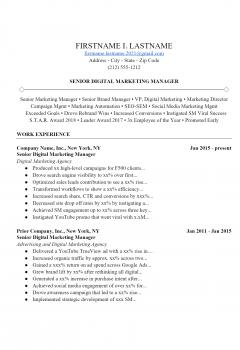 Digital Marketing Manager .Docx (Word)