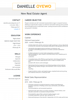 New Real Estate Agent Resume
