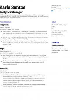 Analytics Manager Resume