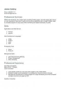 Web Developer Resume