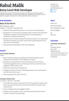Entry Level Web Developer Resume Sample