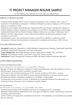 IT Project Manager .Docx (Word)