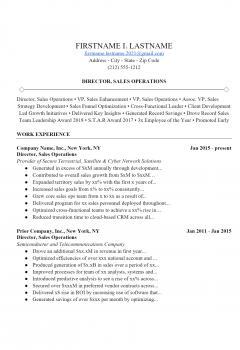 Sales Operator Resume