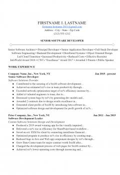 Software Developer Resume .Docx (Word)