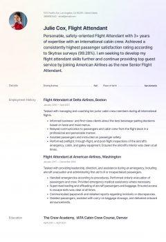 Flight Attendant .Docx (Word)
