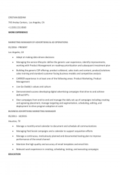 Advertising Manager .Docx(Word)