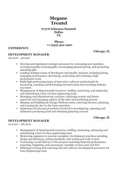 Development Manager .Docx(Word)