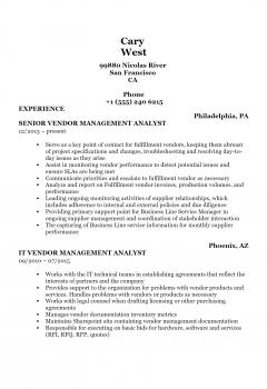 Vendor Analyst .Docx(Word)