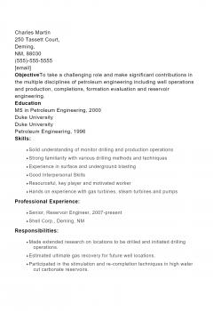 Petroleum Engineer .Docx(Word)