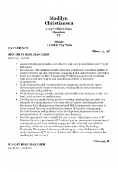 Risk Manager .Docx(Word)