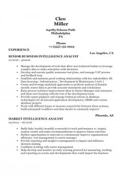 Intelligence Analyst .Docx(Word)