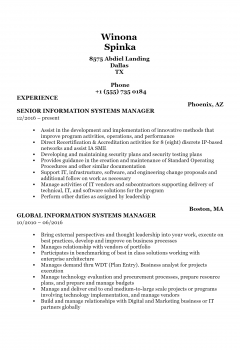 Information System Manager .Docx(Word)